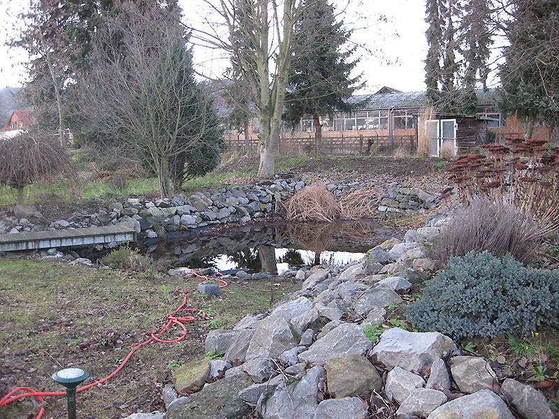 Teichgrundstück kurz vor Rückbau