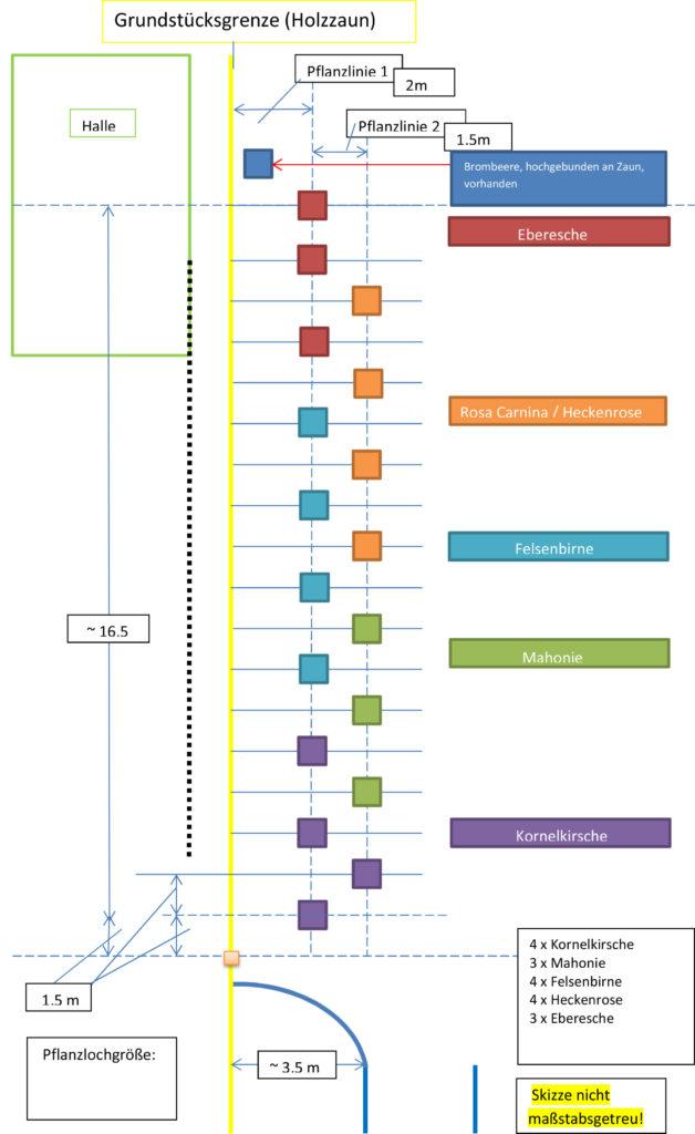 Planung der Bepflanzung für stressfreien und natürlichen Wuchs