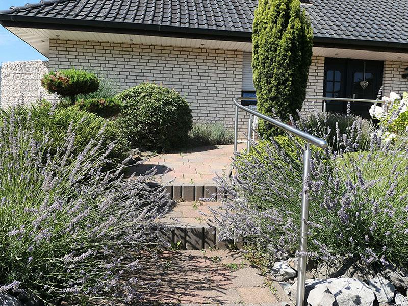 Eingangsbereich mit Lavendel